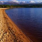 on the shores of Loch Morlich near Aviemore