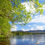 Summer in the Cairngorm National Park